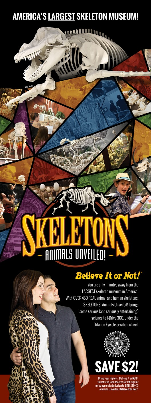 Skeletons: Animals Unveiled Backlit Display at Ripleys Believe It or Not!